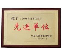 2008年度安全生产先进单位
